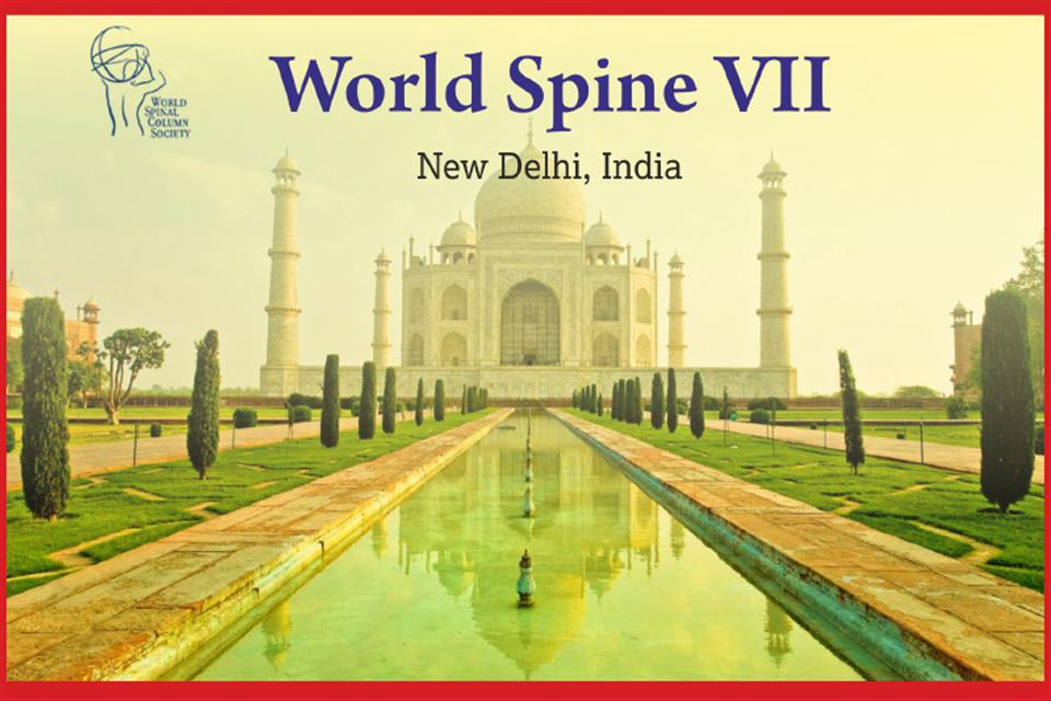 World Spine VII, India